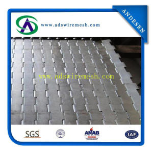 High Quality Plate Belt, Wire Mesh Belt pictures & photos