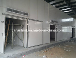 Cold Room Cold Storage Refrigerator Freezer/Meat pictures & photos