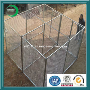 Most Popular Livestock Panel Fencing (xy-L02) pictures & photos