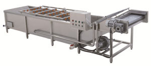 Automatic Vegetable Washing Machine for Food Industry
