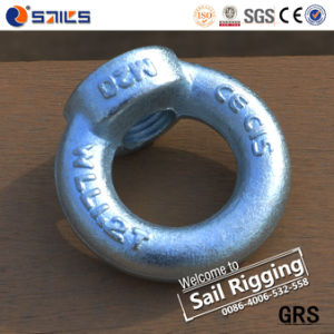 Electric Galvanized Carbon Steel Drop Forged Lifting DIN582 Eye Nut pictures & photos