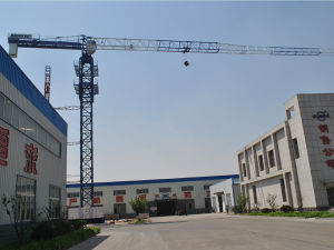 Topless Tower Crane Qtz60 (PT5010)