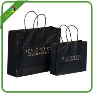 Custom Logo Printed Kraft Paper Bag with Twisted Handle pictures & photos