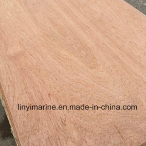 Meranti Plywood Poplar Core for Furniture BB/CC pictures & photos