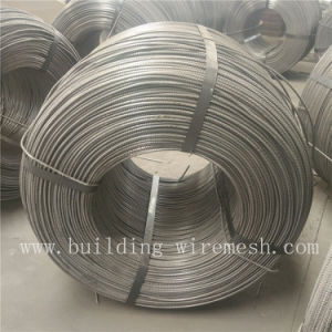 Three Ribbed Cold Rolled Steel Bar pictures & photos