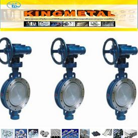 API 6D Electric Three-Eccentric Center Butterfly Valve pictures & photos