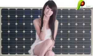 Moncrystalline Silicon Photovoltaic Solar Module (BW-SM 300M72)