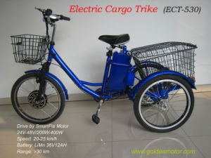 Electric Cargo Tricycle with Magic Pie 3 or Smart Pie Moor pictures & photos