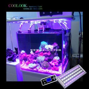 Ornamental Aquarium Lighting Best for Tropical Fish Tank and Coral Reef Tank (90cm/36′′)