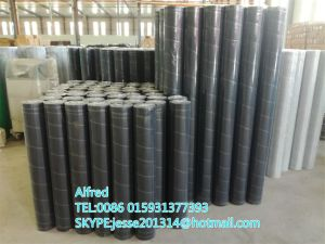 Aluminium Alloy Window Screening Insect Wire Netting pictures & photos