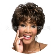 European and American Realistic Short Curly Hair Fluffy Wig Wig Lady Wigs Hair Fiber pictures & photos