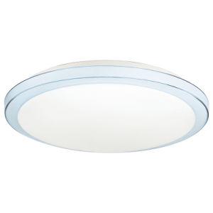 LED Ceiling Light Ceiling Light Indoor Light (SSX-YH420-18W)