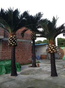 Artificial Plants and Flowers of Date Palm 10m pictures & photos