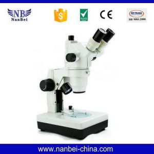 Gl-99ti Price of Digital Setting Microscope pictures & photos