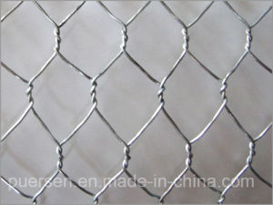 Chicken Wire Mesh and Galvanized Hexagonal Iron Wire Netting pictures & photos