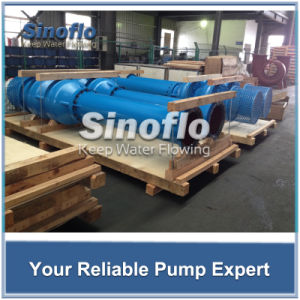 Lineshaft Overhung Axial/Mixed Flow Vertical Turbine Spindle Pump pictures & photos
