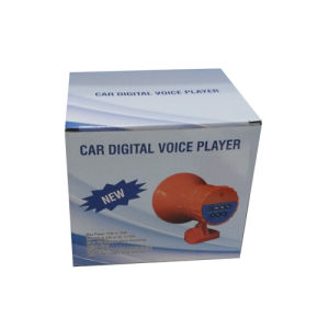 Car Digital Voice Player Support TF-Card pictures & photos