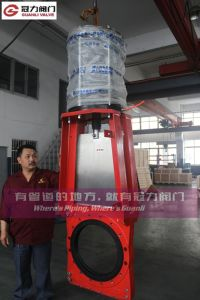 Red Color Kgd Heavy Duty Slurry Knife Gate Valve pictures & photos