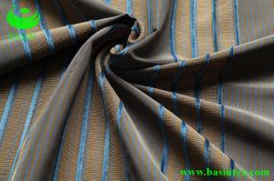 Stripe Velvet Sofa Fabric (BS4001) pictures & photos