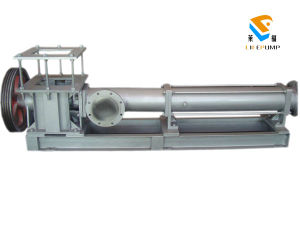 G Series Stainless Steel Single Screw Pump pictures & photos