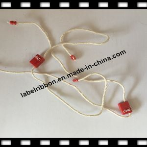Fashion Hanging Plastic Tag/ Garment Brand Pin Lock/Embossed (ST020) pictures & photos