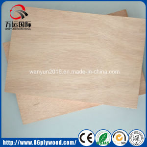 Birch/ Poplar Plywood / Marine Plywood / Commercial Plywood From Factory pictures & photos