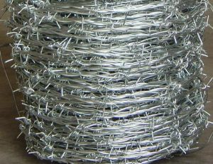 Barbed Wire Mesh From Guangzhou Supplier pictures & photos