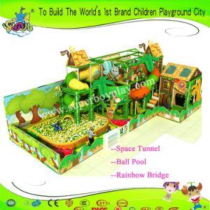 Amusement Park Plastic Fitness Equipment Indoor Soft Children Playground pictures & photos