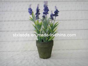 Artificial Cloth Lavender Bonsai (XD13-234)