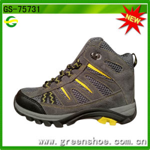 New Arrival Low Price Trekking Hiking Shoe pictures & photos