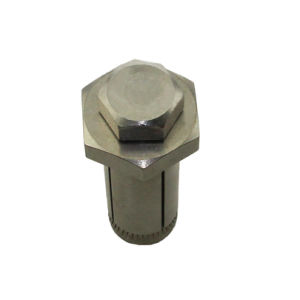 Stainless Steel Expansion Anchor Bolt pictures & photos