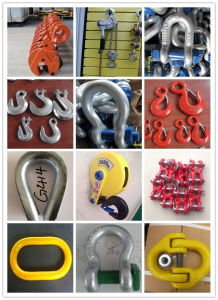 S320 Drop Forged Alloy Steel Lift Eye Hook with Latch pictures & photos