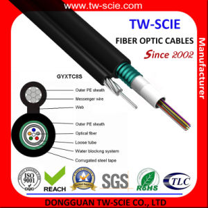 8 Core Self-Support G652D Armour Communication Aerial Optical Fiber Cable (GYXTC8S) pictures & photos