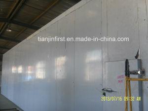 Quick Freezing Machine Squid IQF Tunnel Freezer pictures & photos