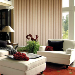 Vertical Blinds for Windows (VB-11) pictures & photos