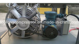 Home CNG Compressor for Car CNG Compressor (BV-5/200) pictures & photos