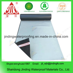 PVC Waterproof Membrane with Bitumen Self Adhesive Membrane pictures & photos