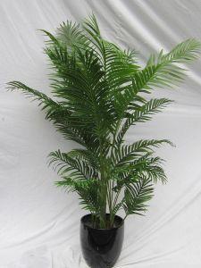 Artificial Plants and Flowers of Gu-Mx-Phoenix-Palm-190cm pictures & photos