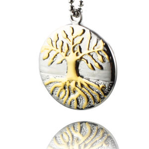 China Jewelry Wholesale 316 Stainless Steel Pendant Urn Necklace Cremation Jewelry Guangdong pictures & photos