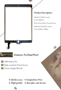 Mobile Phone Touch Screen Panel for iPad Air 2 pictures & photos