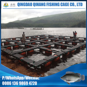 Floating Abalone Farms Cage pictures & photos