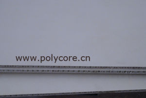 Light Weight Van Roof Honeycomb Sandwich Panel pictures & photos