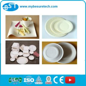 Pulp Molding Paper Plate Making Machine (TW10000) pictures & photos