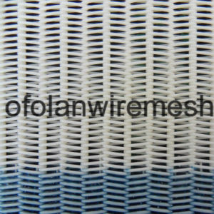 Polyester Dryer Mesh Screen for Paper Mill pictures & photos