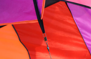 Beautiful Sports Kites for Men From China Weifang pictures & photos