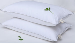 100% Bamboo Cover and Bamboo Filling Pillow pictures & photos