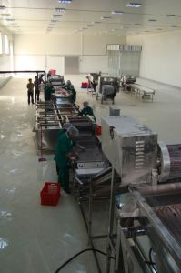 Vegetables and Fruit Processing Line Freezing Cherry Production Line IQF Cherry Freezer Machine pictures & photos