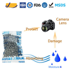 Desiccative SGS Approved Montmorillonite Desiccant for Camera Lens pictures & photos