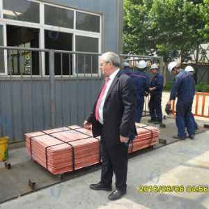 Best Quality Copper Cathode 99.99% High Purity pictures & photos