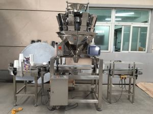 China Automatic Granule Filling Machine pictures & photos